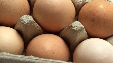 Photo of Morrisons now only sells free-range eggs in Netherfield store