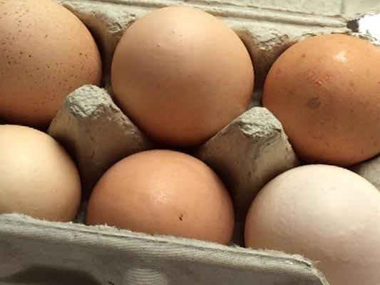Picture of free-range eggs