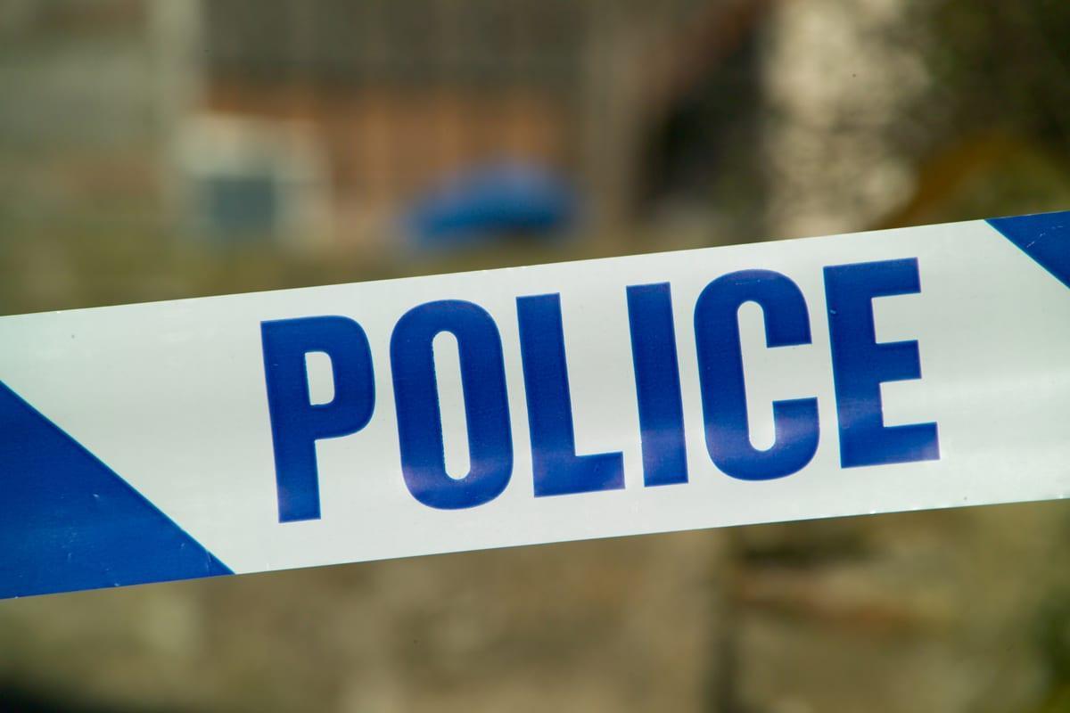 Witness appeal after man dies following arrest in Carlton