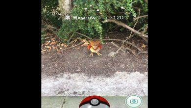 Photo of Bestwood park numbers boosted by Pokémon Go!