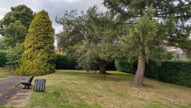 Photo of Decision due on future of Mapperley bowling green