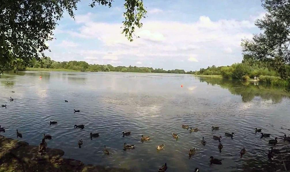 Photo of Volunteers wanted to help improve Colwick Country Park