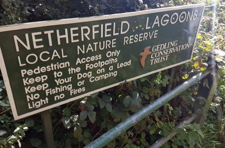 Police presence spotted on land near Netherfield Lagoons nature reserve