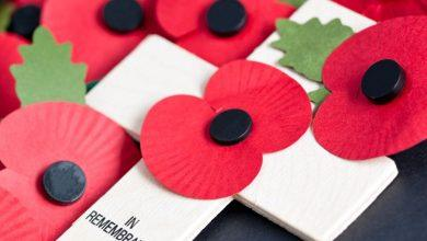 Photo of Gedling Borough Council plan increased support for remembrance services next year