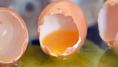 Photo of Shell-shocked: Woman calls 999 to ask what to do about broken eggs in fridge