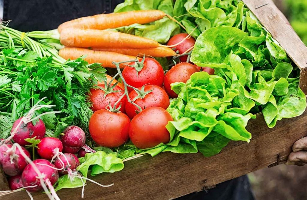 https://www.gedlingeye.co.uk/wp-content/uploads/2018/09/Vegetables-1024x667.jpg