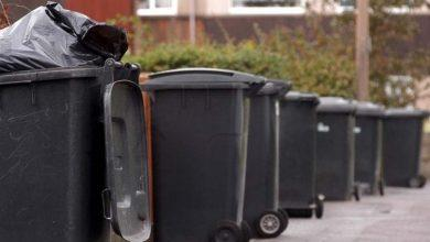 Photo of Festive bin collection day changes across Gedling borough