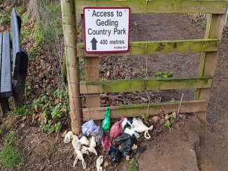 dog-mess-Gedling-Country Park
