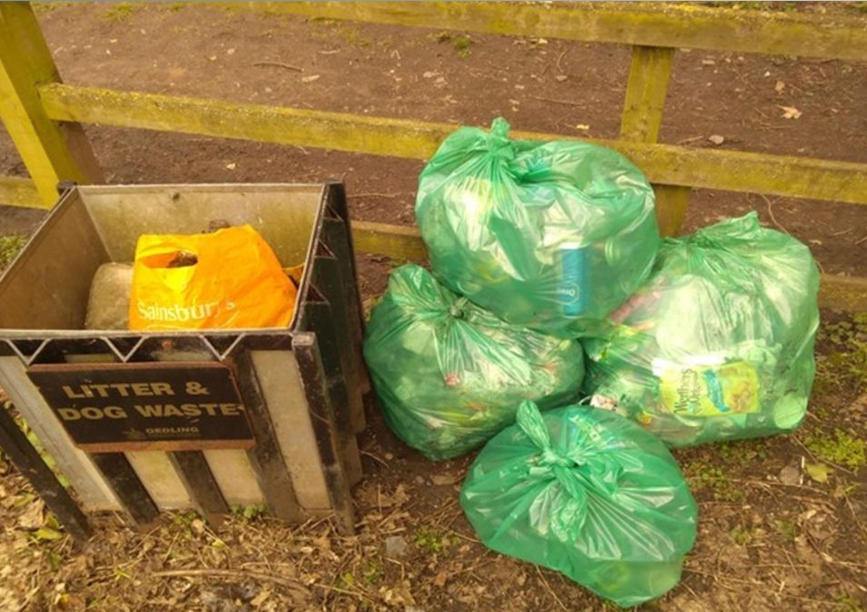 PHILIP ODDIE: Litter problem now reached 'epidemic proportions'