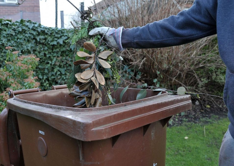 Pink sticker reminder for garden waste collection customers from Gedling Borough Council