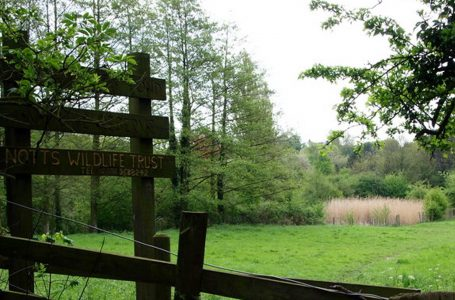 Volunteers will be needed once parish council saves nature reserve from development in Lambley