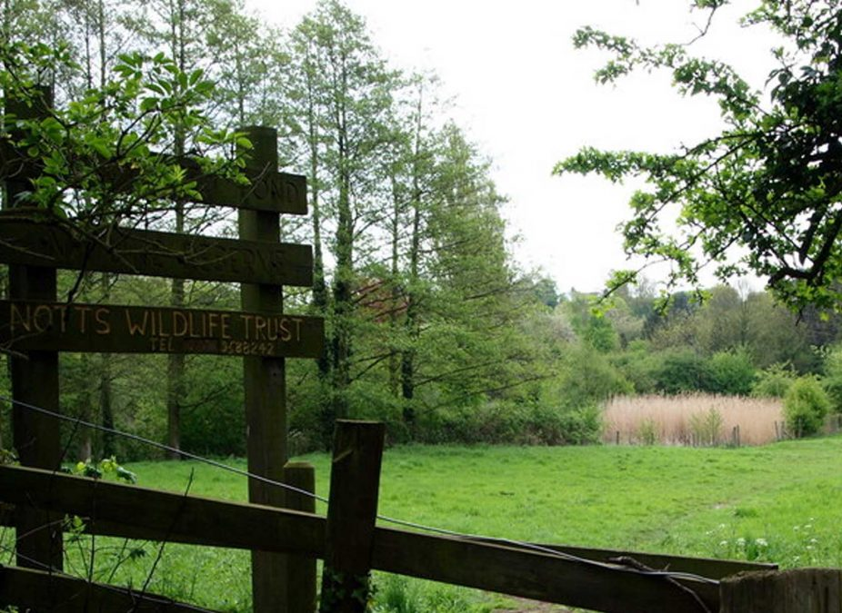 Nottinghamshire Wildlife Trust: 'Lambley nature reserve not being sold as development site'