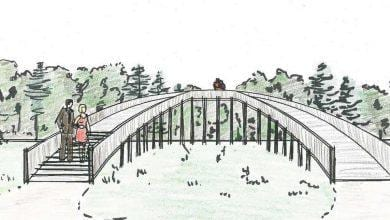 Photo of Viewing platforms part of £193k improvement plan for Gedling Country Park