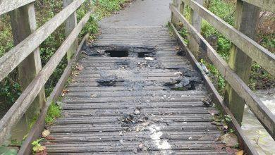 Photo of Footbridge at Bestwood Country Park closed after suspected arson attack