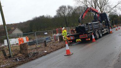 Photo of '40% increase in woodland': This is how the new £40m Gedling Access Road will impact local wildlife and the environment