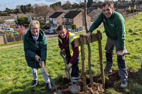 Volunteers and park rangers from Gedling Borough Council plant new trees on Carlton Hill
