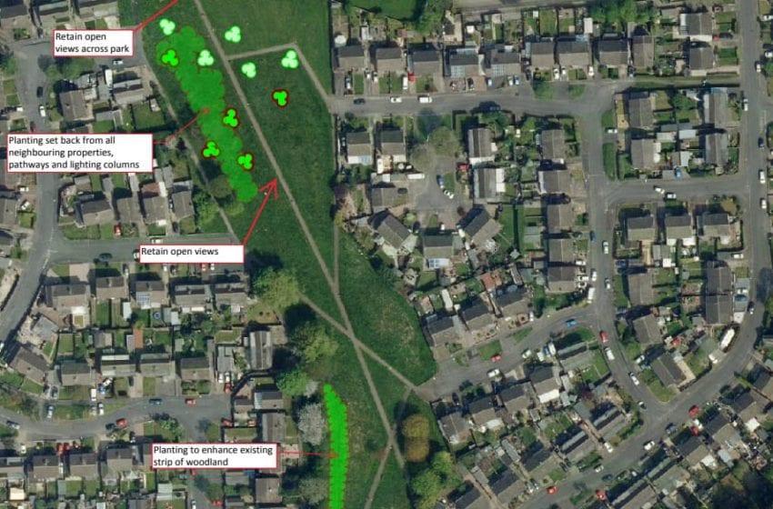 Memorial woodland planned on Carlton Hill to honour borough's coronavirus victims