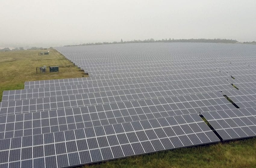 Police appeal after cables are stolen from solar farm at Gedling Country Park