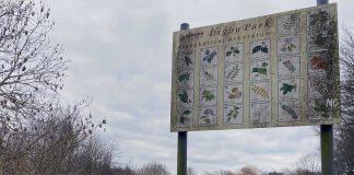 Digby Park Mapperley